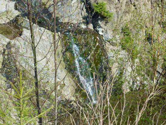 VD #532, Eifel, 5. Tag, Belgien, Naturpark Botrange